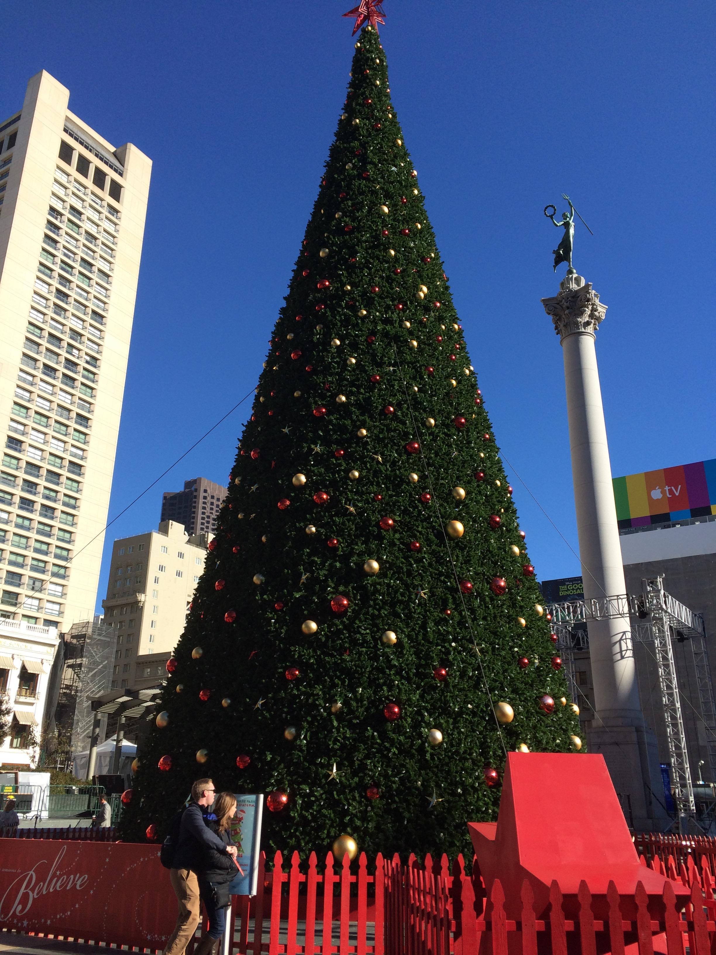 tree at Union Square