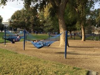 hammocks 2