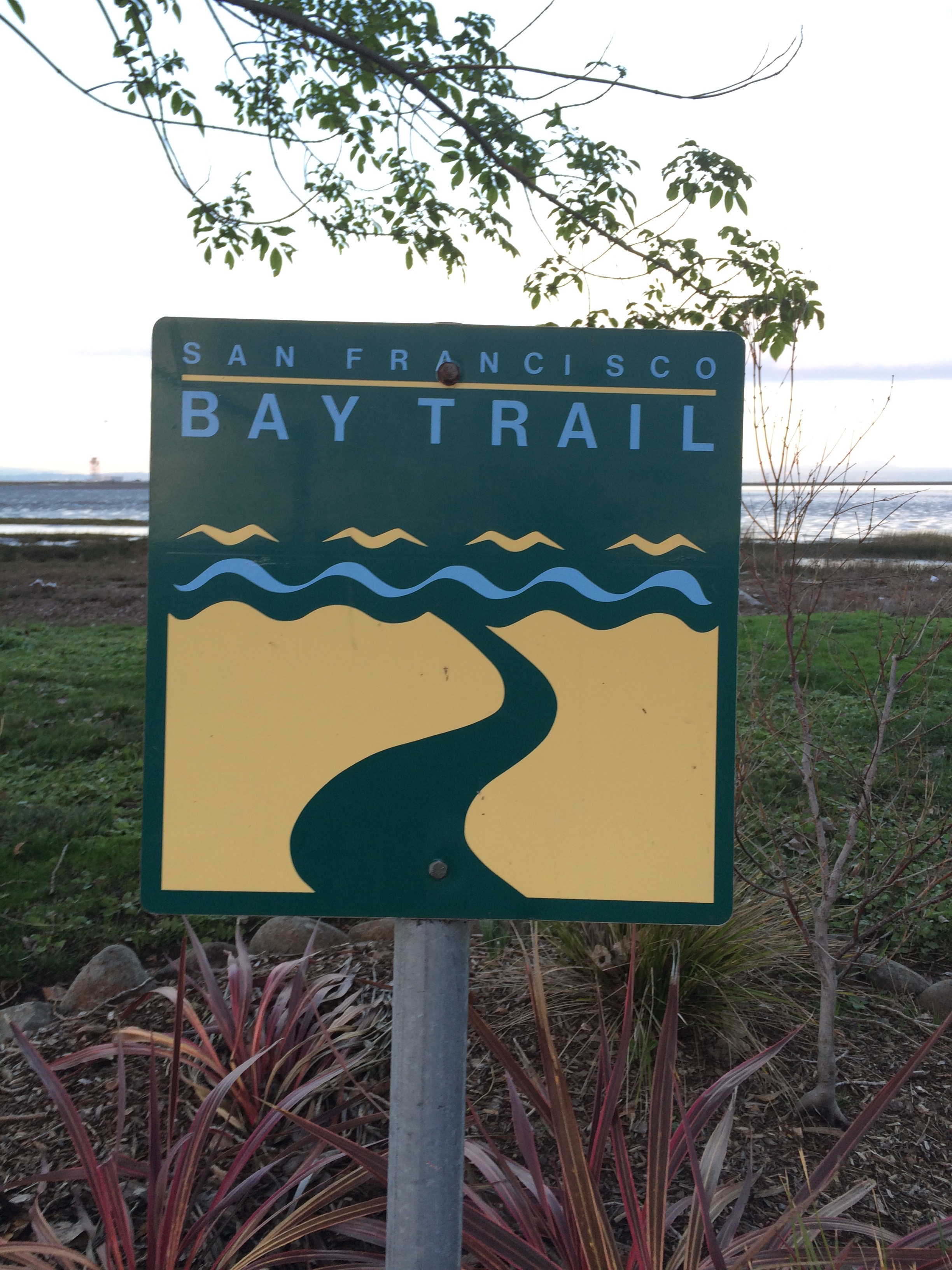 bay trail 1