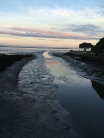 bay trail 5