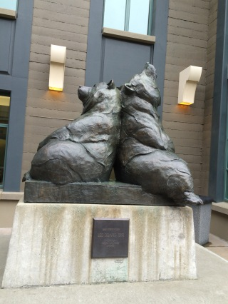 Cal bear 2