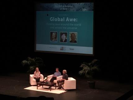 46. global panel