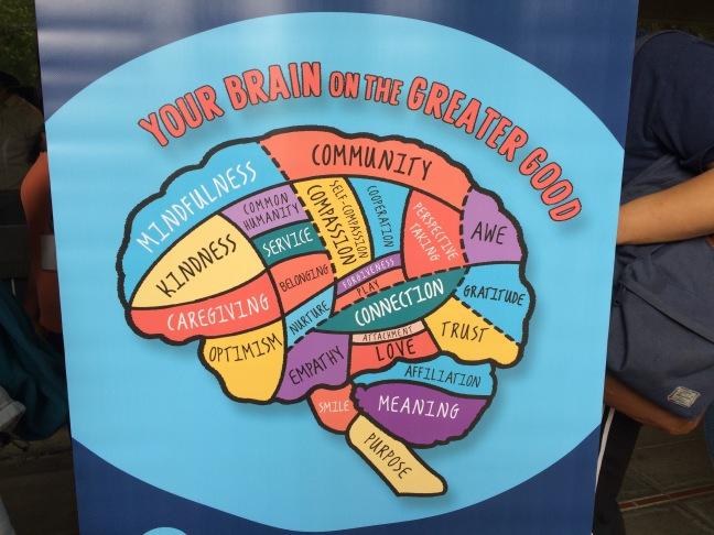 * your brain