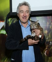 NEW YORK, NY - APRIL 23: Robert De Niro and cat Lil Bub attend the Directors Brunch during the 2013 Tribeca Film Festival on April 23, 2013 in New York City. (Photo by Rob Kim/Getty Images)