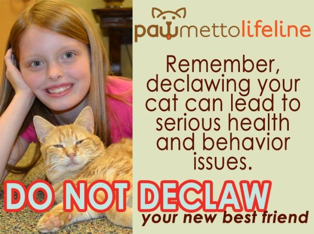 Declaw-Flyer.jpg