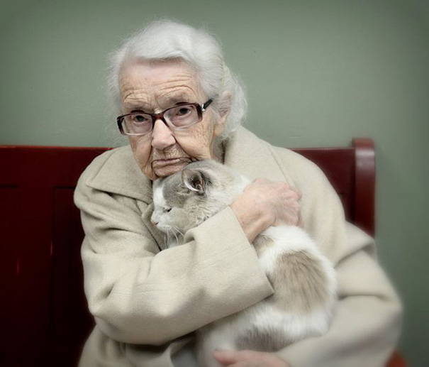 old-adopted-cat-37__605