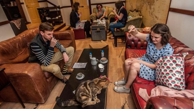 London cat cafe