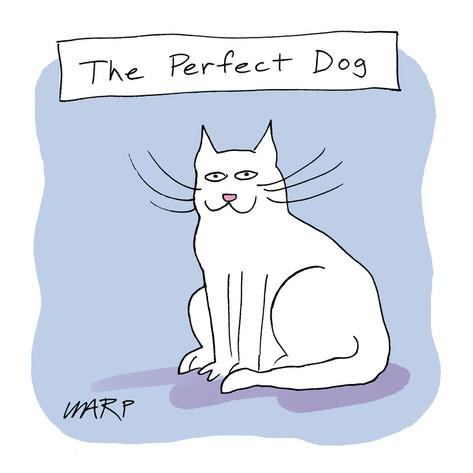 kim-warp-the-perfect-dog-cartoon
