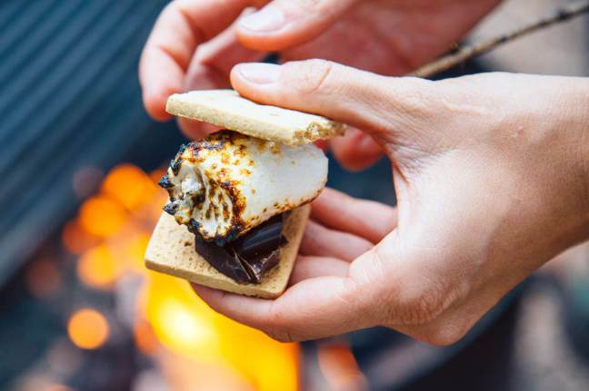 Vegan-Smores-with-Dandies-Vegan-Marshmallows
