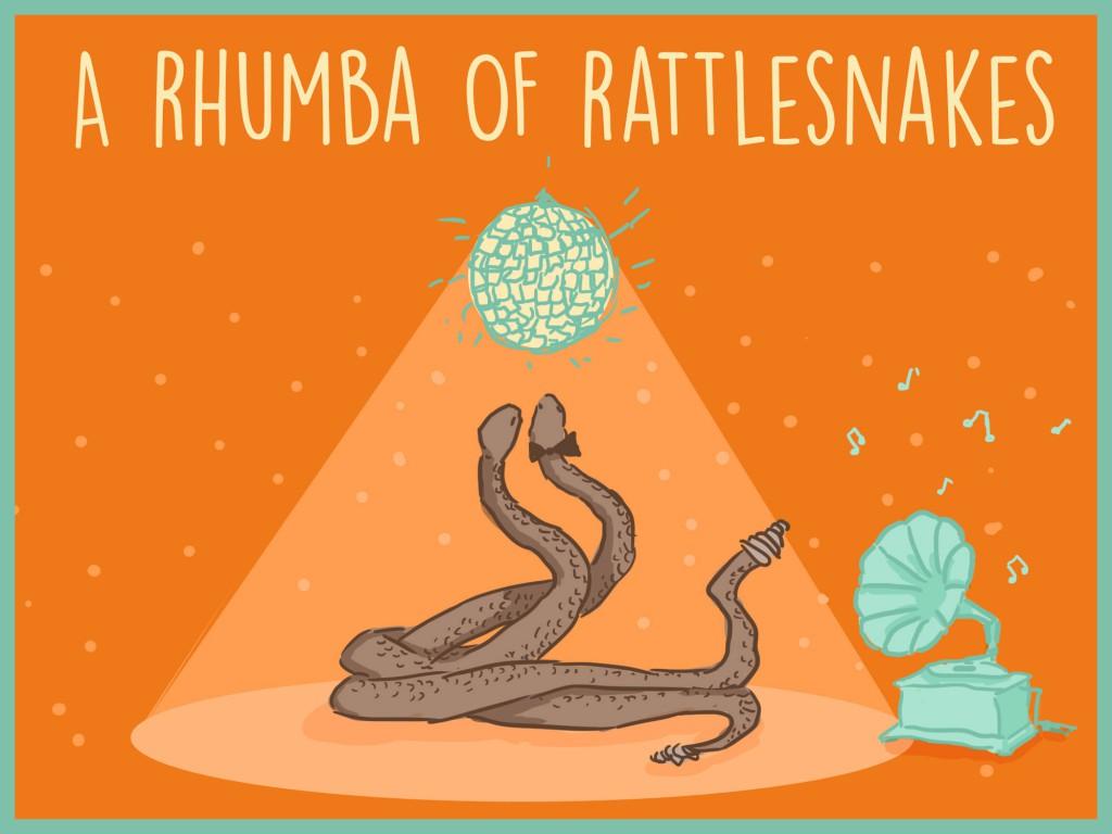 rattlesnakes-1024x768.jpg