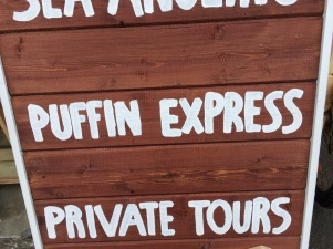 Iceland puffin express
