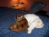 Sara and Gumbo