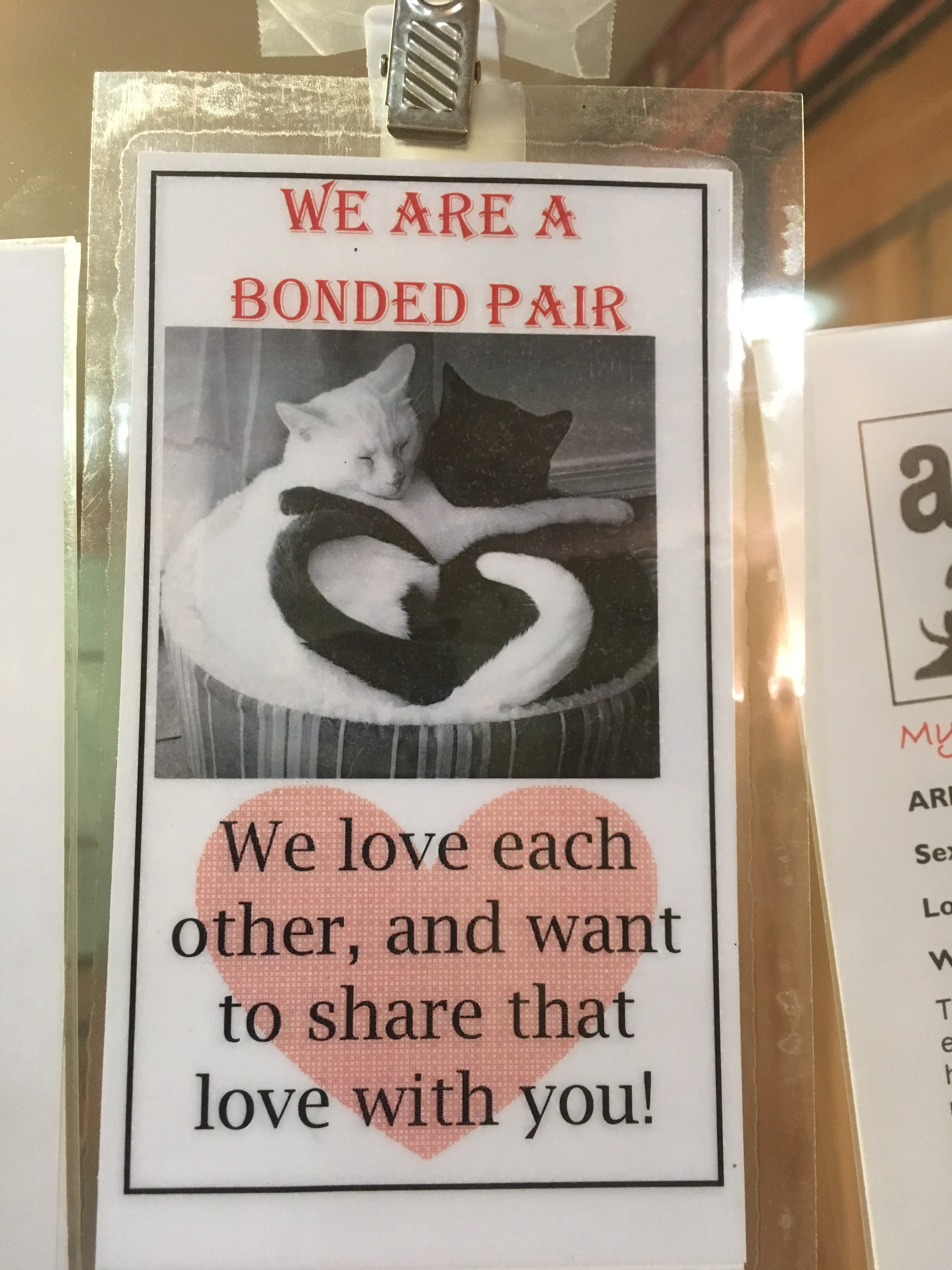 bonded pair
