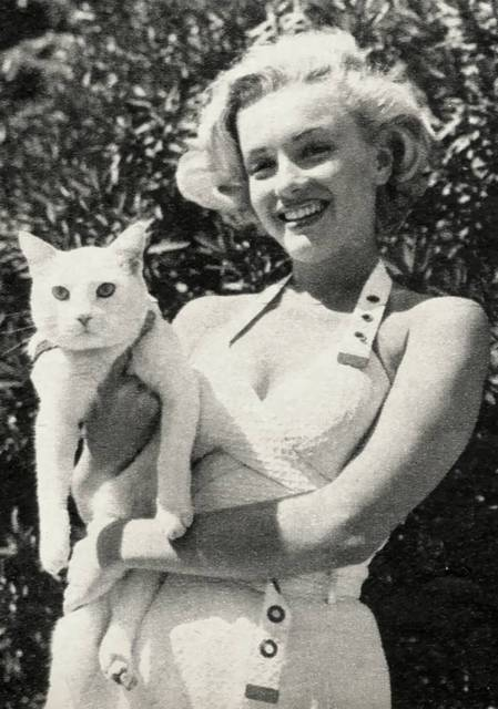 marilyn with cat