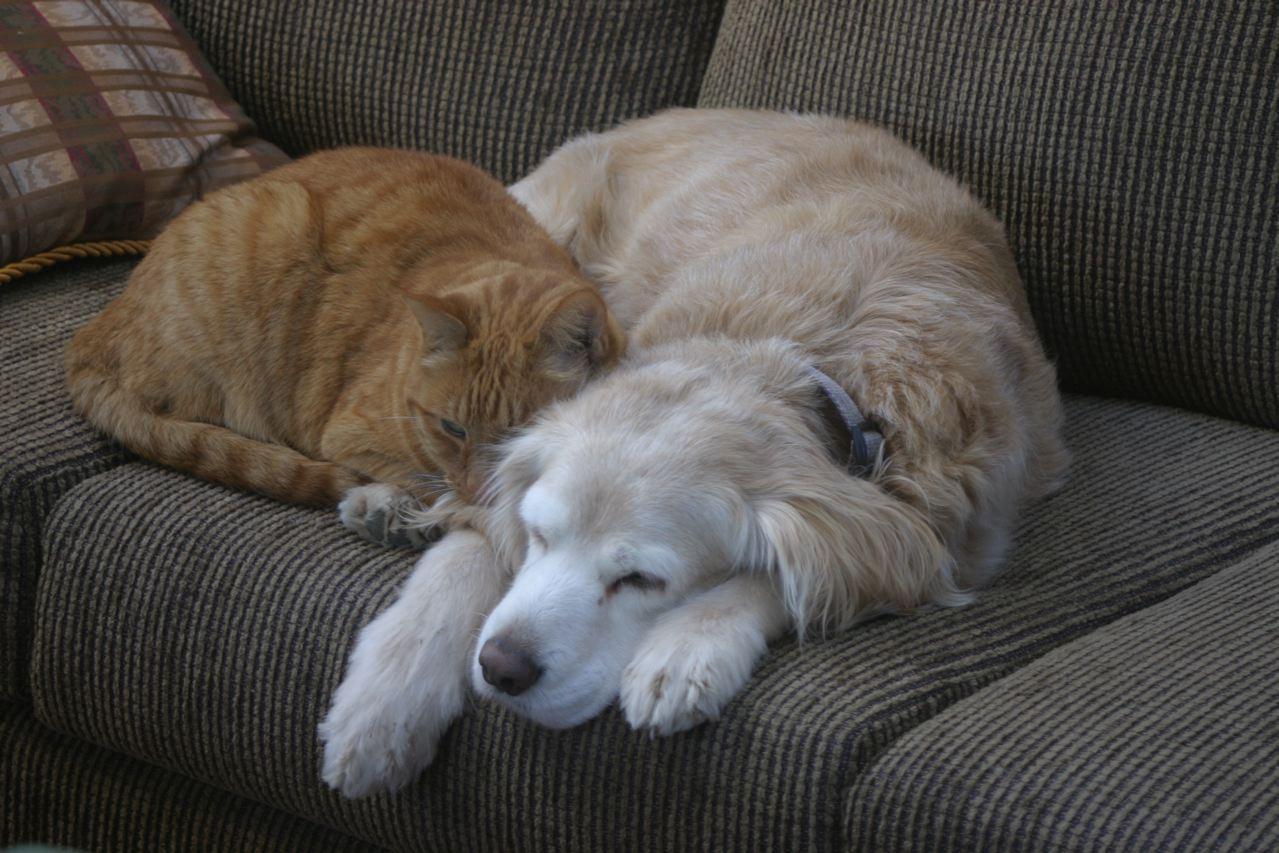 Sadie and Ben