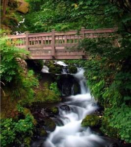 water-under-the-bridge-267x300