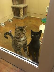 Wynn and Nathan at the door