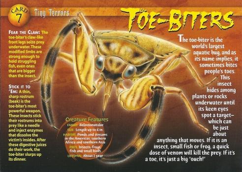 Toe-Biters_front.jpg